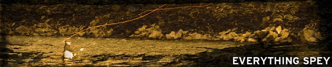 Scientific Anglers Spey Lines