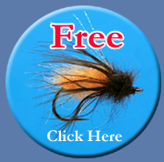 Free Flies with Every Purchase