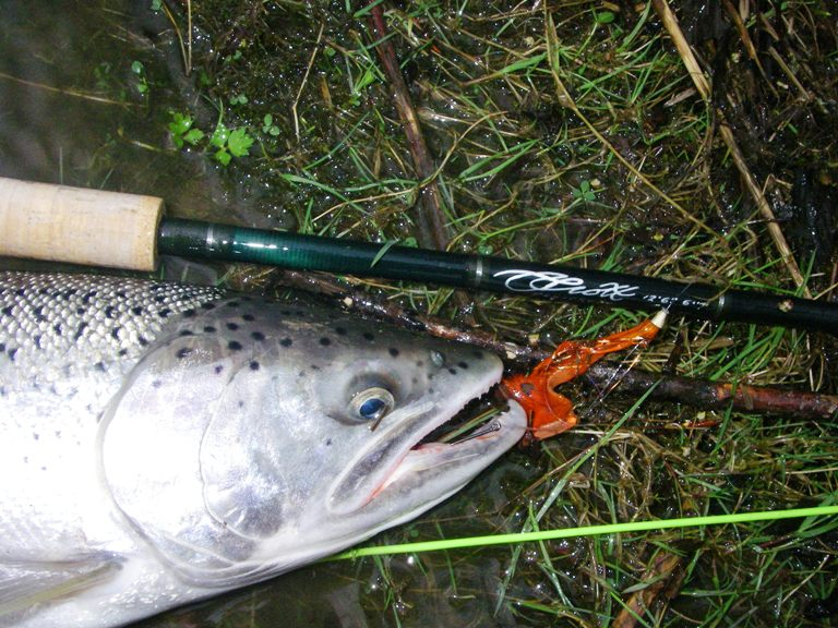 Chehalis river fly fishing guide trip fly fishing shop for Chehalis river fishing