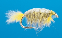 Shrimp Scud Gray - Product Image
