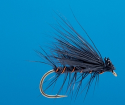 Elk Hair Caddis Black - Product Image