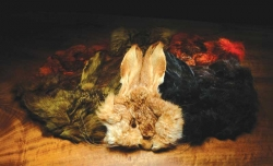 Dyed Hare's Masks - Product Image