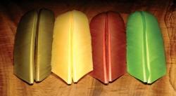 Turkey Biot Quills - Product Image