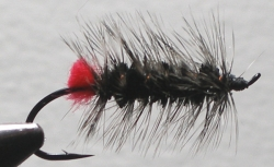 Woolley Worm Steelhead - Product Image