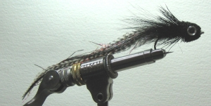 Joe's Striper Dragon-Blk Fly - Product Image