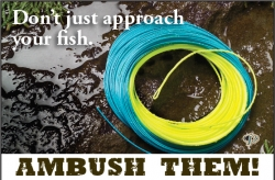 Ambush Fly Line by Royal Wulff - Product Image