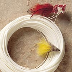 Royal Wulff Bass Fly Line - Product Image