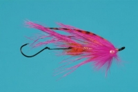 Signature Intruder-Pink/Orange - Product Image