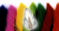 Bucktails - Product Image